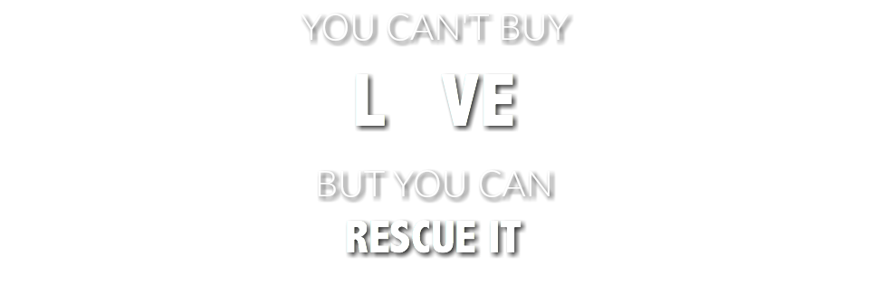 YOU CAN'T BUY L VE BUT YOU CAN RESCUE IT
